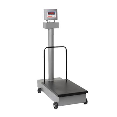 Balança Eletromecânica 300kg W300 H Com Coluna